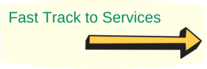 "Link button saying ""Fast track to services"""